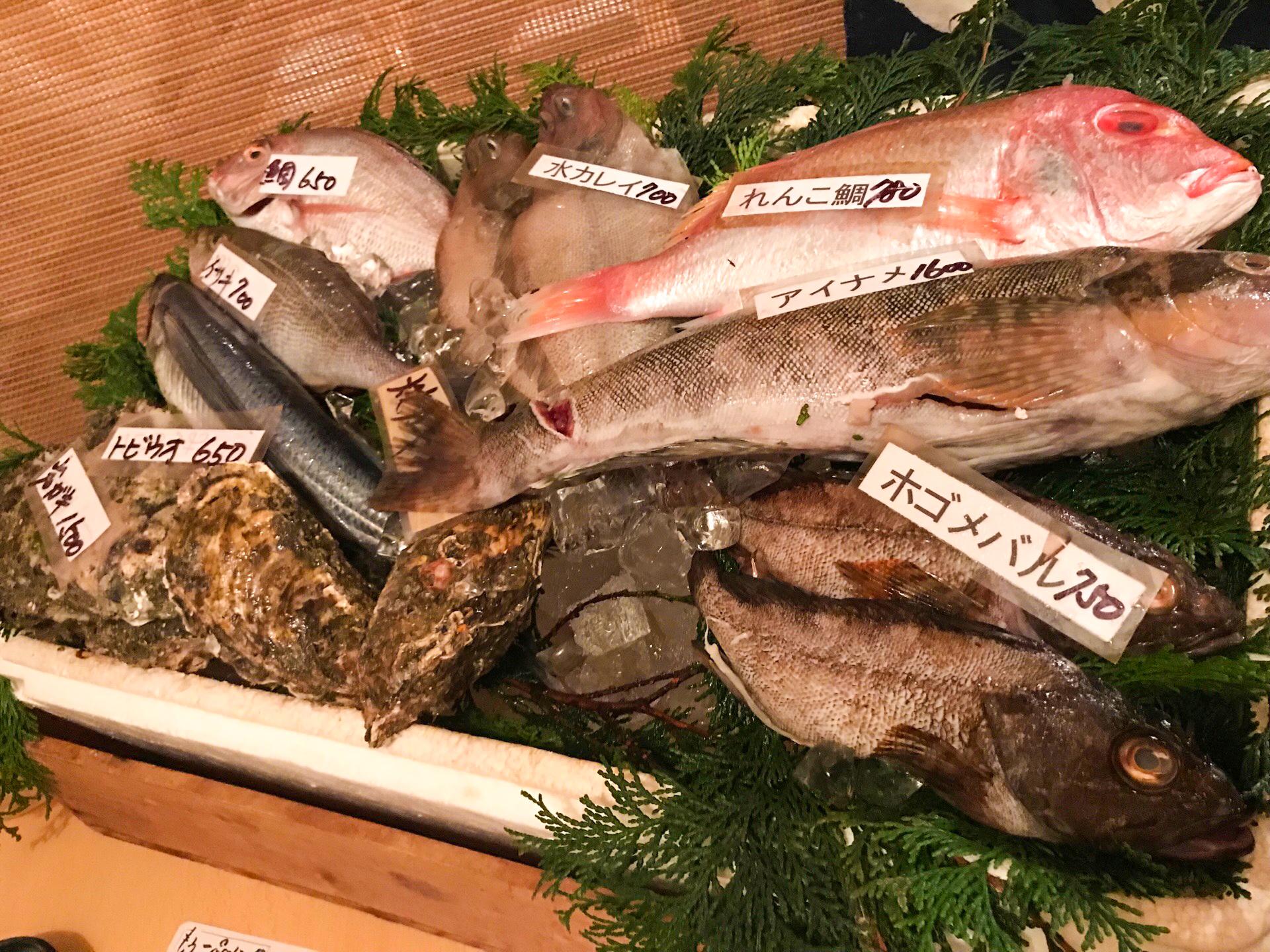 お刺身、煮付け・・・ 旬の魚介を贅沢に♪